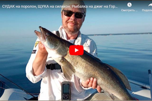 Тестирование поролоновых червей Levsha-NN. Крупный судак, Горьковское водохранилище.
