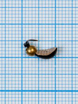 Мормышка Водяной ослик (Asellus aquaticus) 0,55/2, чёрно-золотистый, латунный шар золото